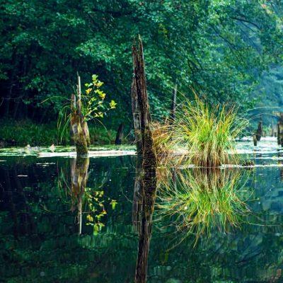 Hubertlaki tó