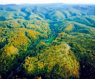 Magas-bakonyi tájvédelmi körzet