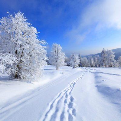 Téli kiruccanás a Bakonyba