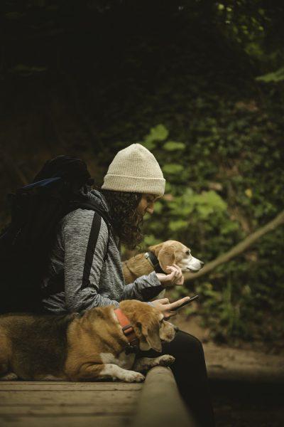 Kempingezés kutyával _ bakonycentrum