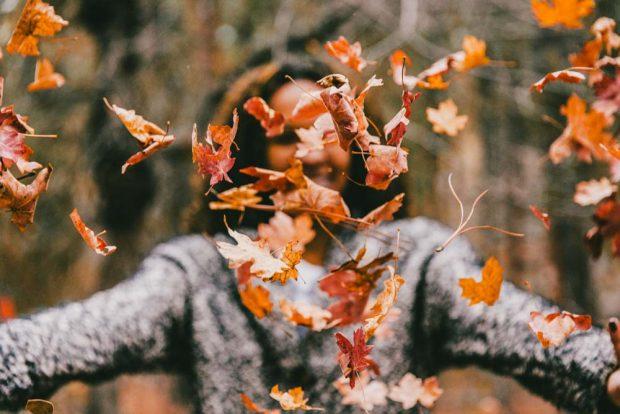 erdei túra ősszel